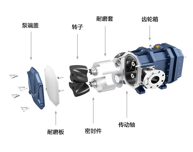 排水抢险车转子泵解析图